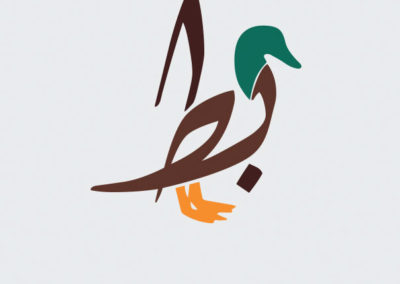 Duck-Kaczka-Batt
